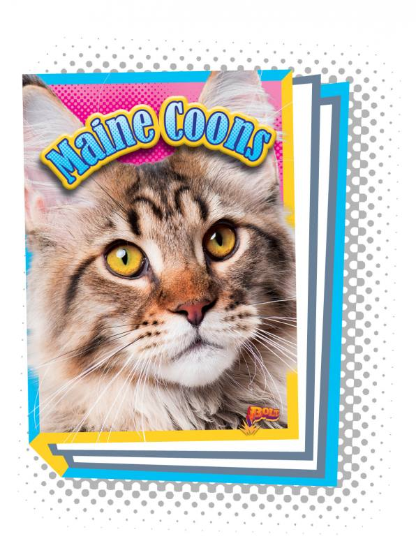Maine Coons (Paperback)