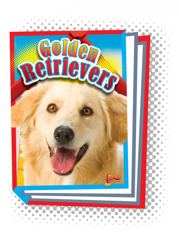 Golden Retrievers (Paperback)