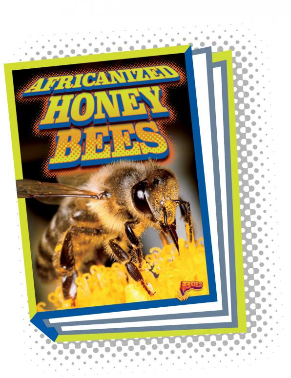 Africanized Honeybees (Paperback)