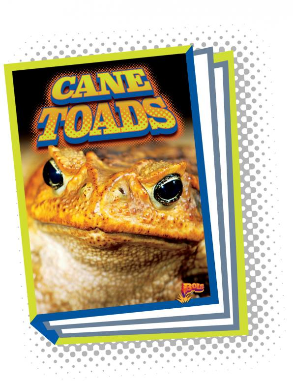 Cane Toads (Paperback)