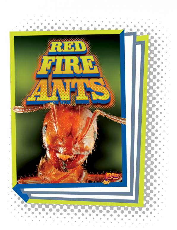 Red Fire Ants (Paperback)