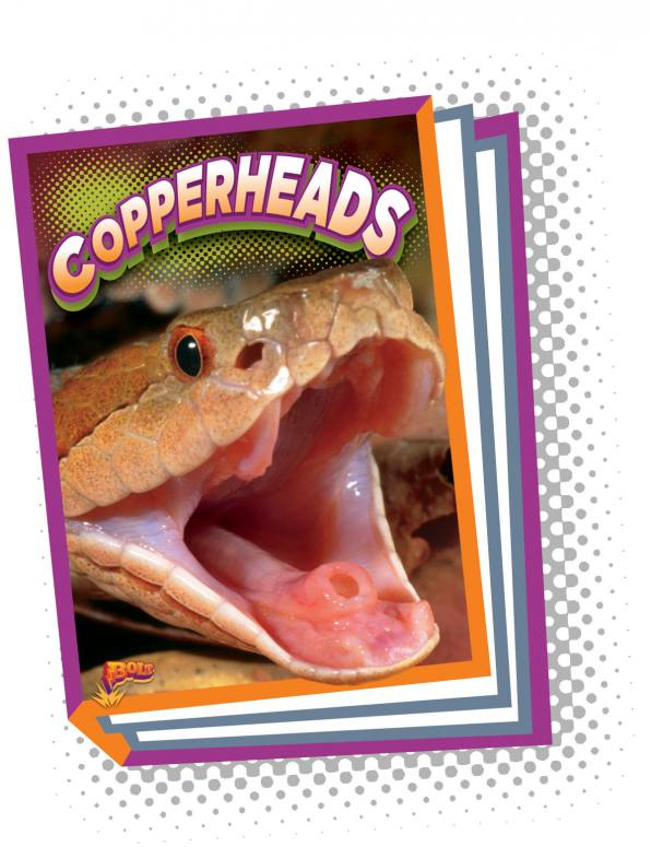 Copperheads (Paperback)