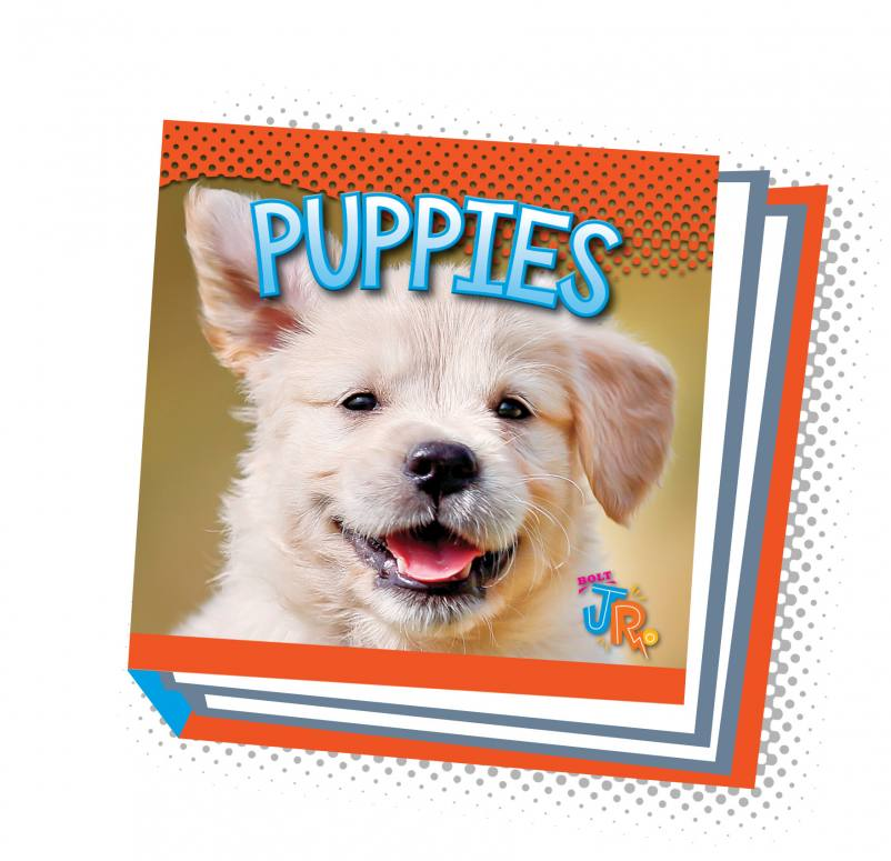 Puppies (Paperback)