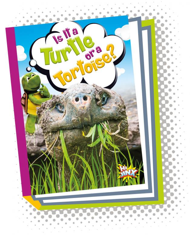 Is It a Turtle or a Tortoise? (Paperback)